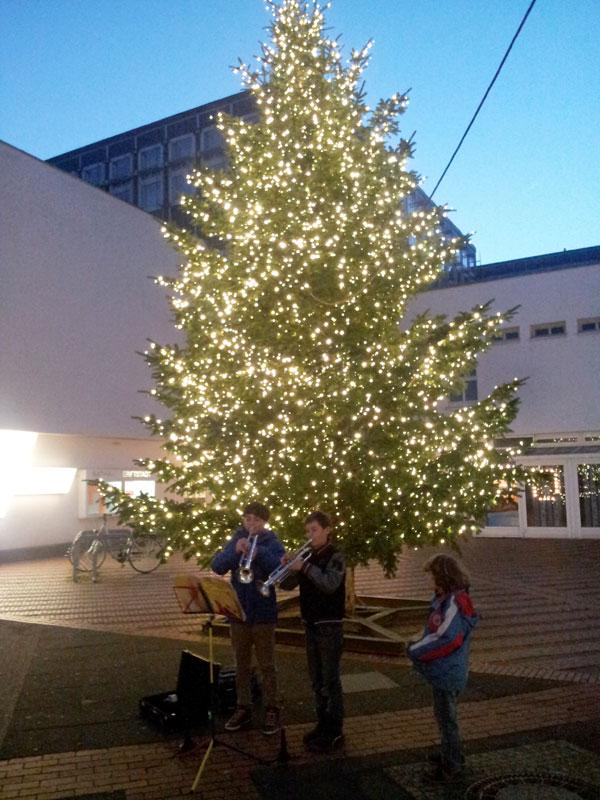 ECL_Weihnachtsbaum1